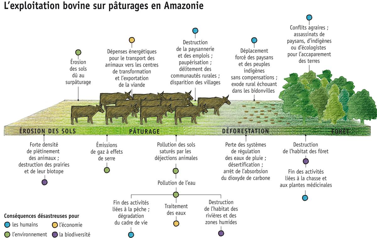 Extrêmement Quand l'industrie de la viande dévore la planète, par Agnès  PC92