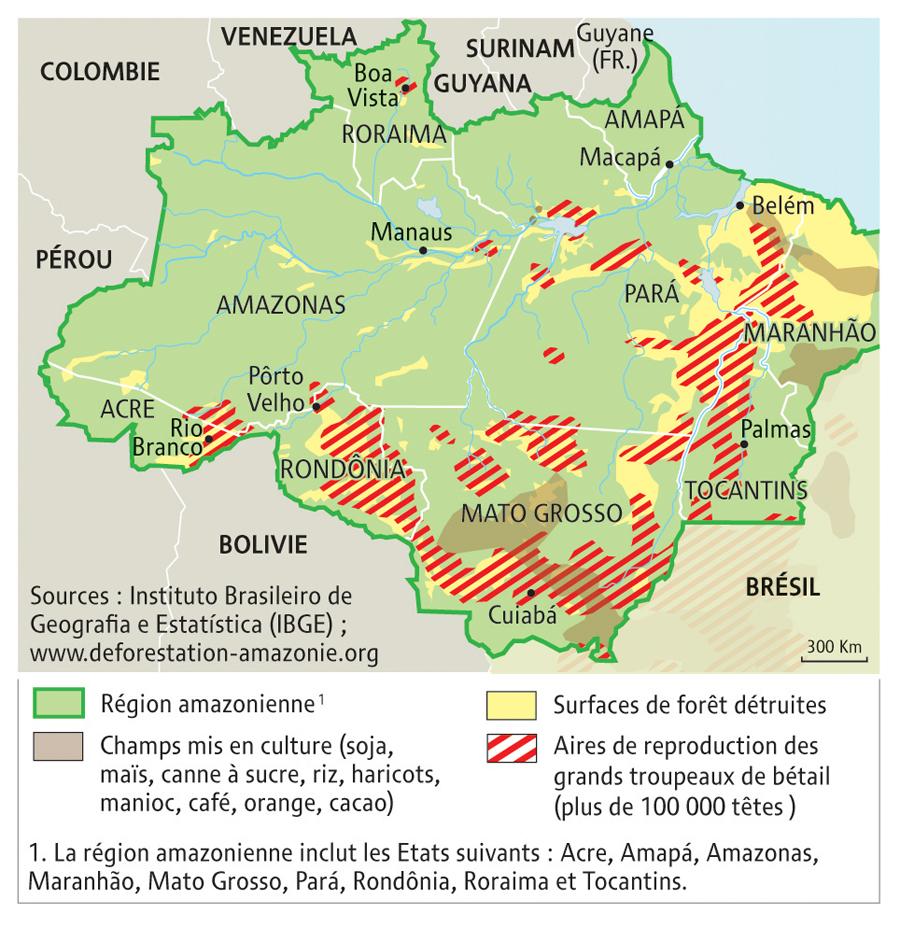 Carte Du Bresil Agriculture.Le Bresil Puissance Agricole Ou Environnementale Par