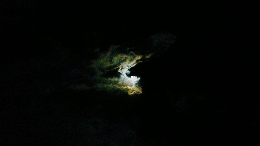 JPEG - 24.1ko